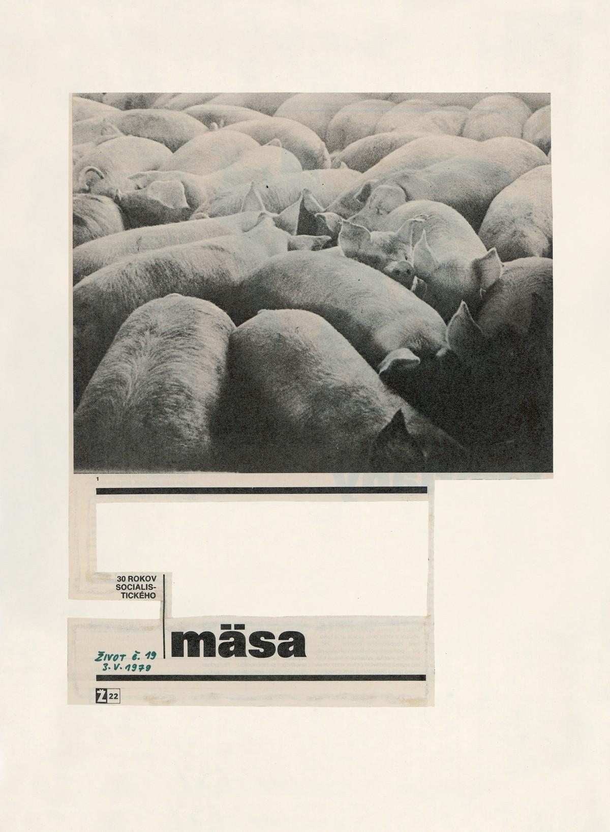 Július Koller, Július Koller – 30 rokov socialistického mäsa (Život č. 19. 3. V. 1979). Slovenská národná galéria